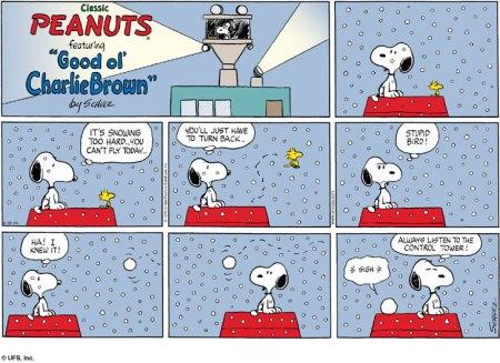 peanuts200411295108.jpg