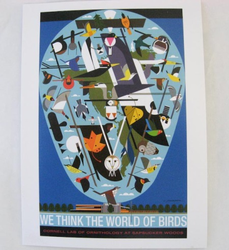 think-the-world-of-birds.jpg