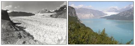 Muir Glacier Melting