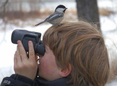 birdwatching2tu9
