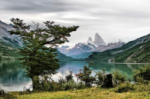 Lago Desierto, Patagonia