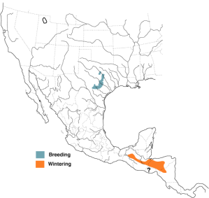 BNA Range Map for Golden-cheeked Warbler