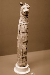 398px-EMS-96004-Rosecrucian-Egyptian-Cat-Mummy