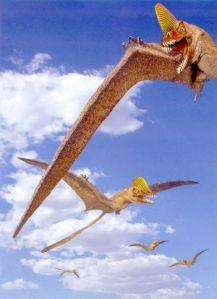 flying-lg dinosaur museum