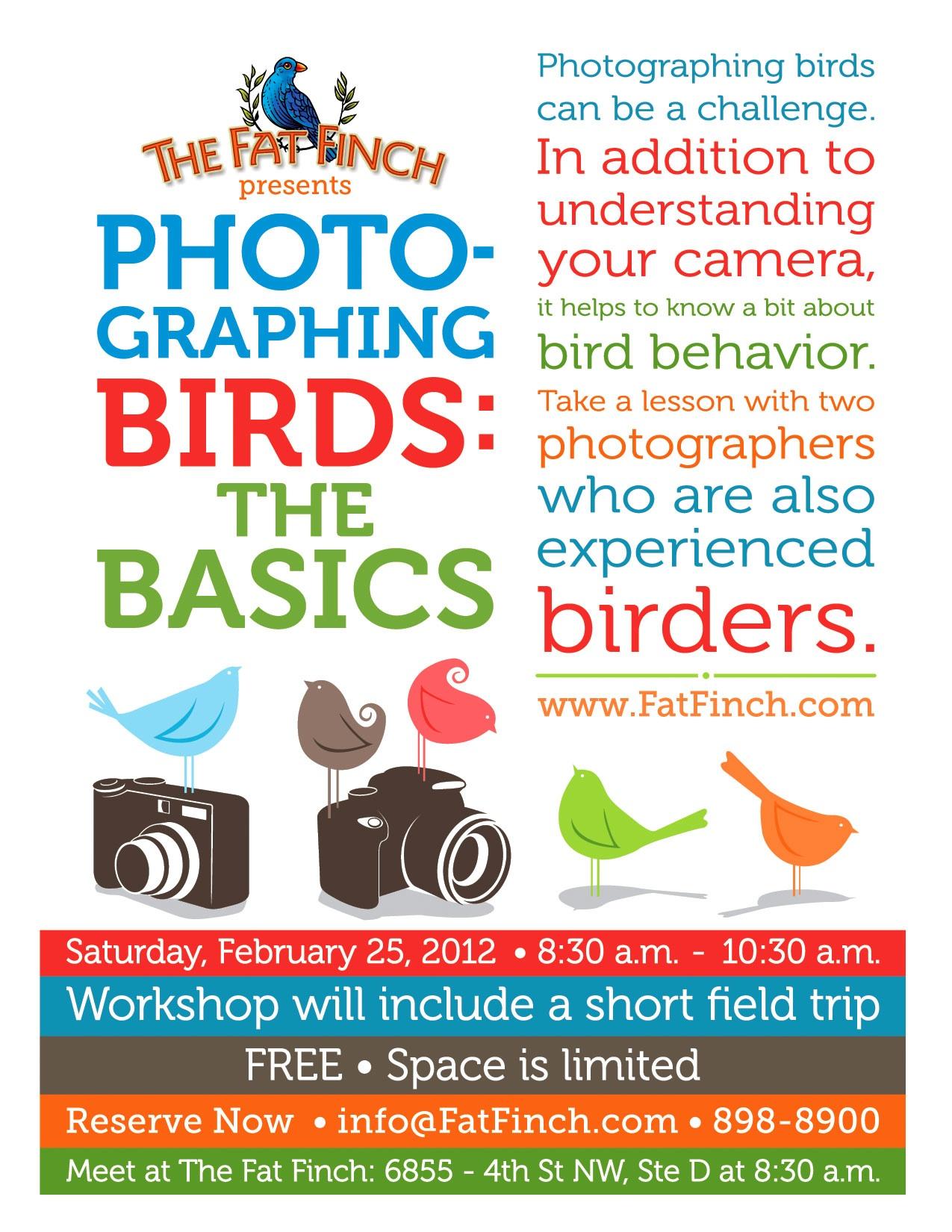 photograph-birds.jpg